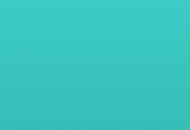 portfolio-placeholder Lectus aptent facilisis habitasse portfolio placeholder 800x550